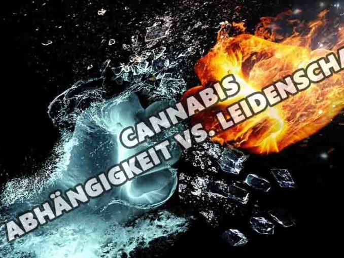 CANNABIS ABHÄNGIGKEIT VS