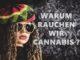 warum-rauchen-wir-cannabis