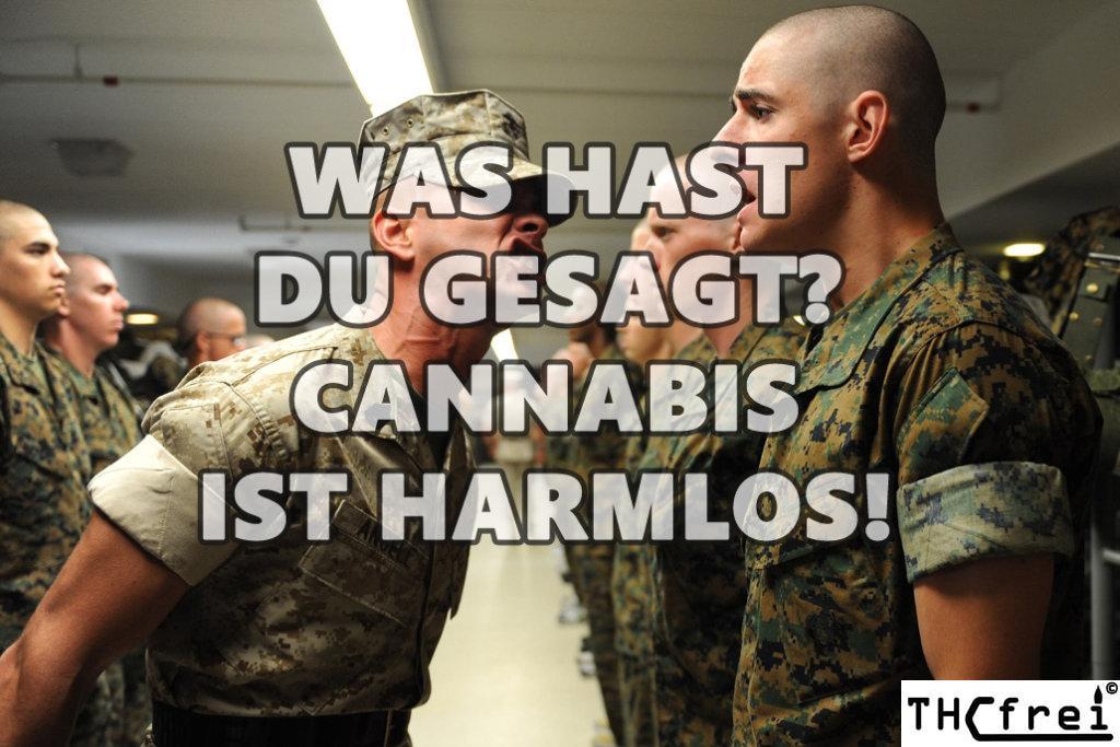 Fahren unter Cannabiseinfluss die Strafen, Kosten und Sanktionen! Bußgeld bis 10.000€ möglich!